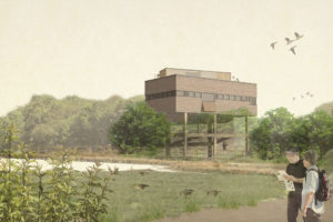 WWT Slimbridge – Estuary Tower Opening Weekend – Lots of events – 16-17 Nov