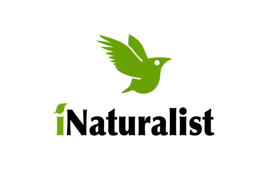 CANCELLED - iNaturalist for ID & recording